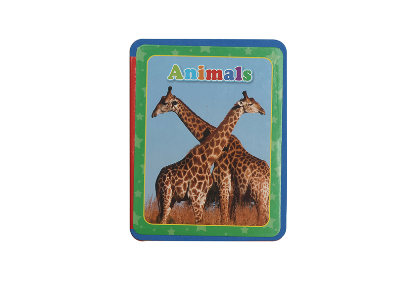 EVA book education book toy animal book